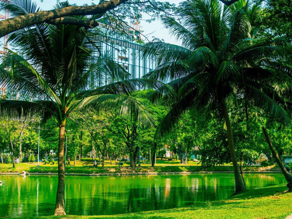Bangkok Lumphini Park